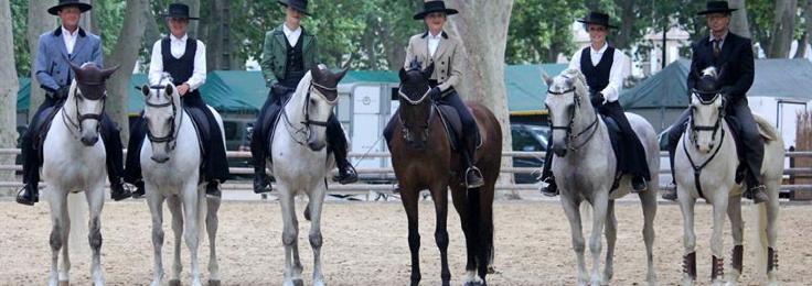 Eté 2014 : spectacles équestres