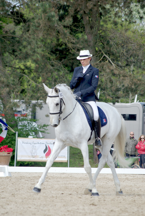 claire atila dressage muniche working equitation