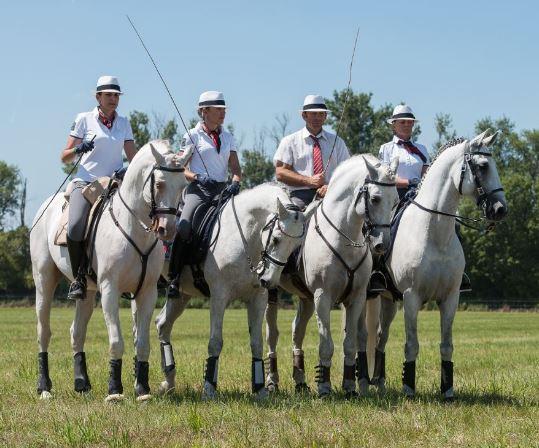bd equipe française