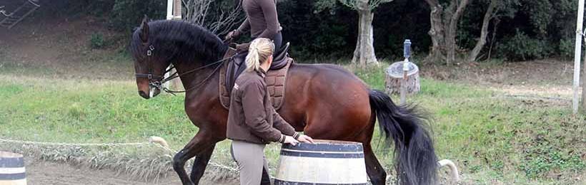 Stages Equitation de Travail printemps